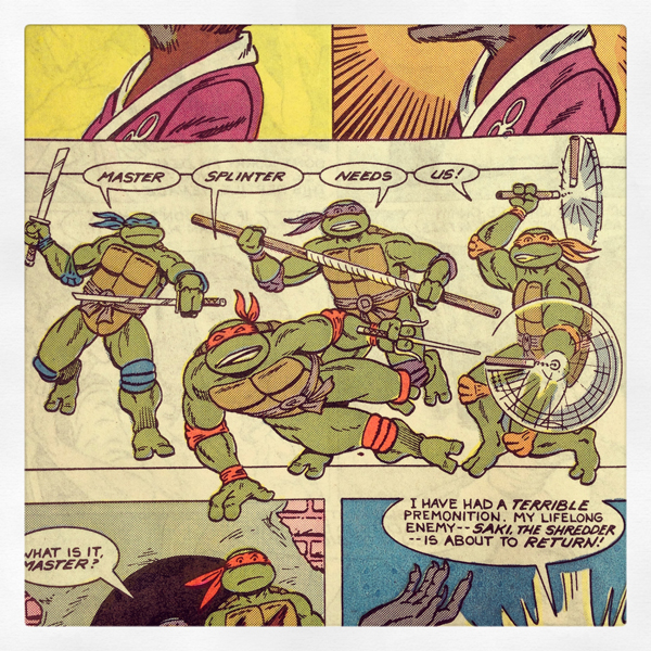 turtles_kid-friendly